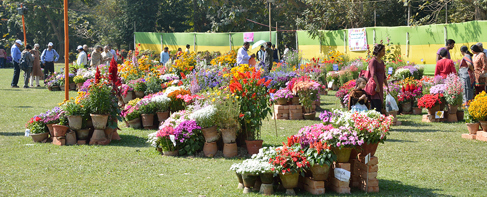 Agri Horticultural Society of India